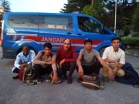 MÜLTECI - Jandarma'dan Mülteci Operasyonu
