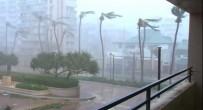 FLORIDA - Maria Kasırgası Dominik'i Vurdu Açıklaması 15 Ölü, 20 Kayıp