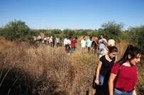 ZILAN - Çukurova Üniversitesi Hukuk Fakültesi'ne giden yolda taciz korkusu
