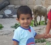 NECMETTİN ERBAKAN - Küçük Hamza'dan İlk Yaşam Tepkisi Umutlandırdı