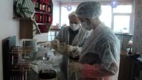 ALO 174 - Aydın'da Gıda Güvenliği Denetimleri Devam Ediyor