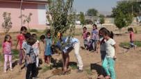 ÖĞRETMENLER - Okulun Bahçesini Meyve Bahçesine Dönüştürdüler