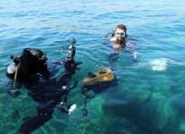 PAŞALIMANı - UEDAŞ, Denizaltı Robotuyla Müdahaleye Hazır