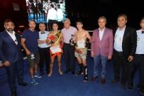 SADIK ALBAYRAK - Gebze'de Muay Thai Şampiyonası Heyecanı