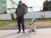 İz Takip Köpeği Cevher'in Büyük Başarısı
