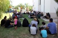 SURİYE - Okul Servisiyle Kaçak Göçmen Taşıdılar