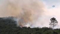 NURETTIN BARANSEL - Sancaktepe'de Askeri Alanda Yangın