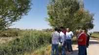 TARıM - TİKA'dan, Aral Gölü Civarında Fidanlık Ve Ağaçlandırma Çalışmaları