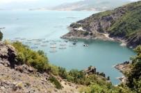 ALABALIK - Tokat'ta Yılda 5 Bin Ton Balık Üretiliyor