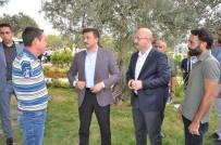 MEHTERAN TAKıMı - AK Parti'li Hamza Dağ'dan Şehit Ailesine Ziyaret