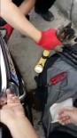 Araç Kaputuna Sıkışan Minik Kediyi İtfaiye Ekipleri Kurtardı