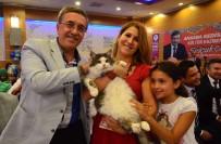 YEMEK YARIŞMASI - 2. Uluslararası Pursaklar Kedi Güzellik Festivali Başlıyor