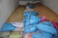 OSMAN GÜNGÖR - Ağrı'da Arpa Ve Buğday Satışları Başladı