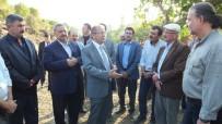 ERSIN YAZıCı - Edremit Körfezinin İlk Organik Zeytinyağı Fabrikası Burhaniye'de Kuruluyor