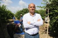GÜMRÜK KAPISI - Kuzey Irak Krizi İç Piyasada Meyve Ve Sebzeyi Ucuzlatabilir