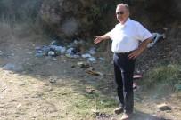 ŞELALE - Turistlerin Gözbebeği Çöplerle Boğuşuyor