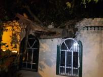 ASIRLIK ÇINAR - Beykoz'da Facianın Eşiğinden Dönüldü