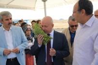 EKINEZYA - Çolakbayrakdar, 'Kayseri Tarım Şehri Olarak Anılacaksa Bunun Yolu Kocasinan'dan Geçer'