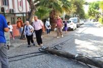 YAŞLI KADIN - Çürüyen Telefon Direği Yaşlı Kadının Üstüne Devrildi