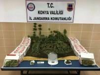 İMRENLER - Konya'da Jandarmadan Uyuşturucu Operasyonu