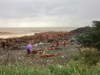 Sele Kapılarak Denize Ulaşan Odunlardan Ve Kütüklerden Kışlık Odun İhtiyaçlarını Karşılıyorlar