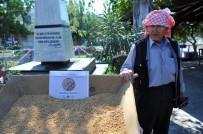 CAN YÜCEL - Alım Garantili Buğday Üretim Projesi Başladı