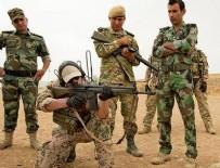 Almanya Kürtlere askeri desteğini gözden geçirecek
