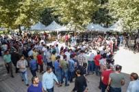 ŞEHITKAMIL BELEDIYESI - Gaziantep'te 11 Bin Vatandaşa Aşure İkramı