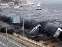 GUARDIAN - Tsunami 1 milyon deniz canlısını taşıdı