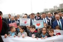 KALP SAĞLIĞI - Küçükçekmeceliler Kalp Sağlığına Dikkat Çekmek İçin Yürüdü