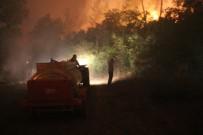 Bolu'da Yangın 7 Saattir Sürüyor