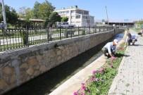 ÇEVRE KIRLILIĞI - Gürpınar'da Kanal Temizleme Çalışması