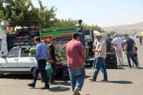 OSMAN İLHAN - Kurban Bayramında Kapanan Hal Pazarı Üreticiyi Zora Soktu