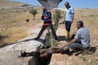 Midyat'ta Çukura Giren Atı İtfaiye Ekipleri Kurtardı