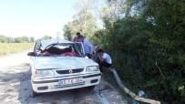 Sinop'ta Otomobilin Üzerine Ağaç Düştü Açıklaması 1 Ölü, 2 Yaralı