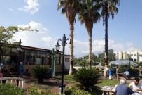 YILDIRIM DÜŞTÜ - Hastane Bahçesine Yıldırım Düştü, Palmiye Ağacı Alev Aldı