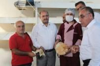 Kızıltepe'de Suriyeliler İçin Ekmek Yapan Fabrika Kuruldu
