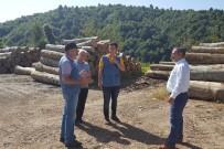 HASAN KESKIN - Orman Bölge Müdürü Keskin Akçakoca'da İncelemelerde Bulundu