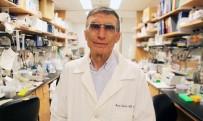BÜLENT ECEVIT - Aziz Sancar Adına Özel DNA Temalı Park Yapılıyor