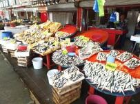AV YASAĞI - Kurban Bayramı Balıkçıyı Vurdu