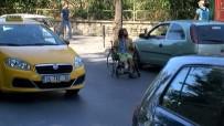 ENGELLİ VATANDAŞ - Tekerlekli Sandalyeyle Tehlikeli Yolculuk
