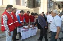 KURBAN KESİMİ - Türk Kızılayı Van'da 600 Büyükbaş Kurban Kesti