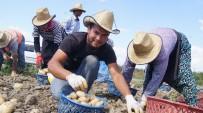 NITELIK - Akıllı Köy'de Patates Denemesi Başarıyla Sonuçlandı