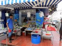 KÖPEK BALIĞI - Balık Tezgâhları Şenlendi