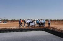 BİYOGAZ - Enerji Yönetimi Projelerinden 14 Milyon Lira Hibe Aldı