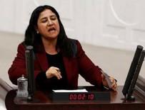 PIR SULTAN ABDAL KÜLTÜR DERNEĞI - HDP milletvekili Demirel hakkında fezleke