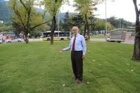 TELEFERIK - Teferrüç'teki Kavşak Düzenleme Çalışmaları Tamamlandı