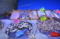 AV YASAĞI - Bilecik Balık Sezonunun İlk Günlerinde Fiyatlar El Yaktı