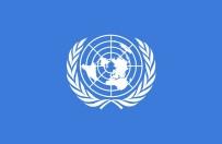SURIYE DEVLET BAŞKANı - BM Açıklaması Suriye Rejimi Sarin Gazı Kullandı