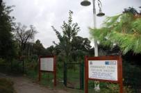 ALI ARSLAN - Kadıköy'deki Okullarda Hasat Zamanı